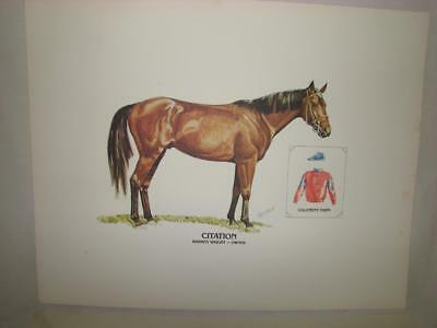 Citation 1948 Kentucky Derby Triple Crown Horse Race Winner Print w/ Info
