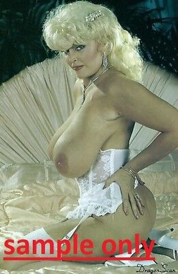 Candy Samples Pin Up Queen  In White Corset  8X10 Color High Gloss