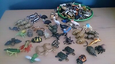 Yowies Toys - Animals Birds Insects BULK LOT