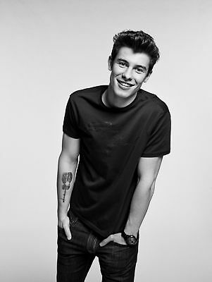 A3 Size -SHAWN MENDES smile  WALL DECOR ART PRINT POSTER