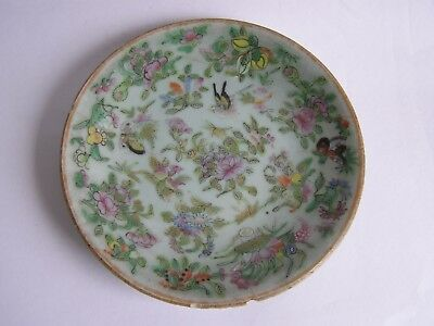 Antique Chinese celadon famille rose plate 18 cm