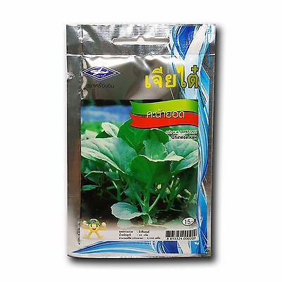 1 pack 3000+ seed Chinese Kale Vegetable Yummy