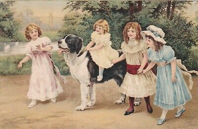 Old Postcard Children Girls St Bernard Dog  G1