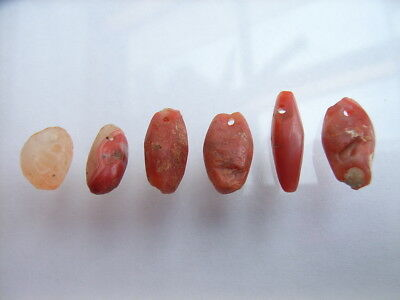 6 Ancient Neolithic Amulets, Red Jasper,Carnelian, Stone Age, VERY RARE! TOP!