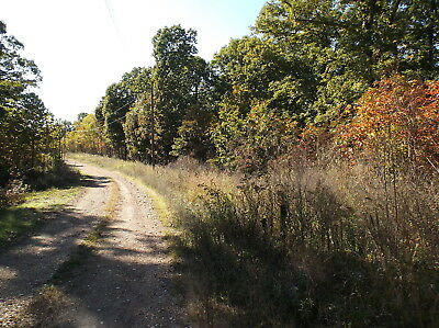 5.32 Acres of Land, Timber, Missouri, Lake Access, Electric, Private Road