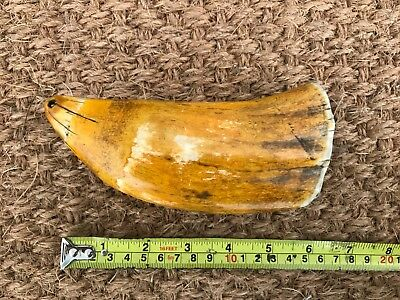 Tabua Faux Whale Tooth, 19th Century, Possibly Earlier