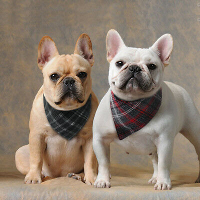Dog Collar Neck Scarf Neckerchief Soft Cotton Small Puppy Collar for Bulldog S M