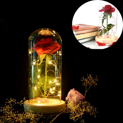 Beauty and the Beast *Rose Lamp* with Fallen Petals in a Glass Dome on a Wooden