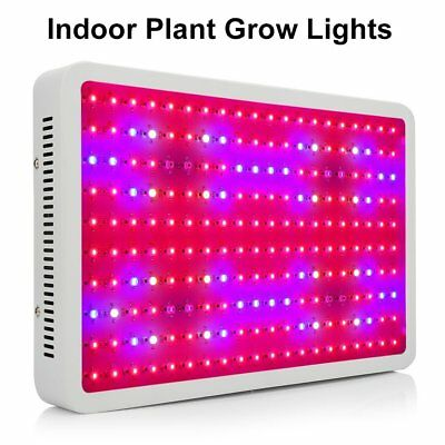 2000W LED Grow Light Full Spectrum Lamp for Hydroponics Greenhouse Indoor Plant