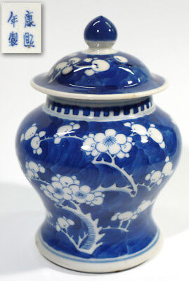 Chinese Blue & White Cylindrical Prunis Painted Jar & Cover.