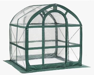 Flowerhouse SpringHouse Clear 6-ft L x 6-ft W x 6.5-ft H Pop-Up Greenhouse