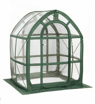 Flowerhouse PlantHouse 5' Clear 5-ft L x 5-ft W x 6.5-ft H Pop-Up Greenhouse