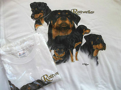 Rottweiler Sweatshirt  & T-shirt Set  Medium ( 38 ~ 40 )