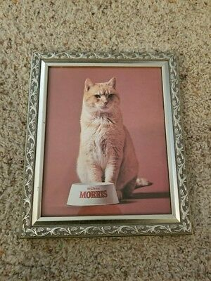 Vintage Framed 9 Lives Morris the Cat Advertisement