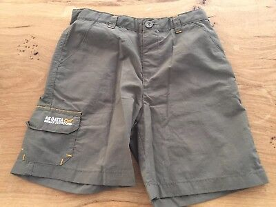 Regatta Outdoorshorts, Gr.116, olive