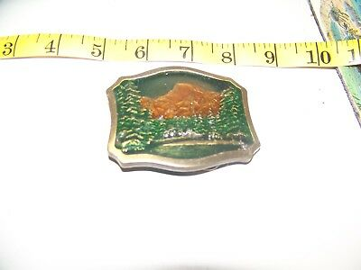 Froz'n color Belt Buckle yosemite national park By Earth Sea San Francisco