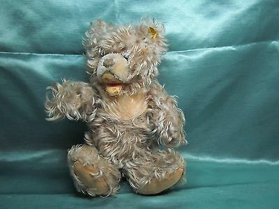 Steiff 0300/28 Zotty Bär bear Teddy Teddybear original PA55 mass 73 ?Zottelbär