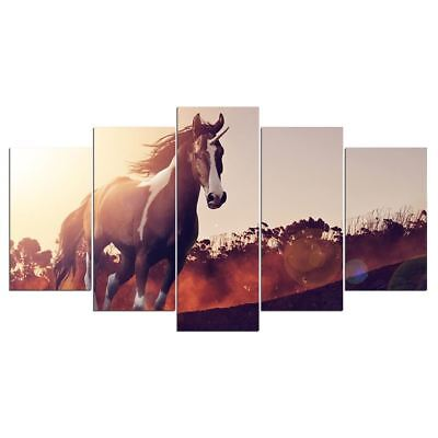 5 Panel Wall Art on Canvas Running Wild Mustang Horse Wall Picture for Room