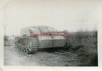 WWII photo- Captured German Sturmgeschutz STUG III Assault Gun Tank Destroyer