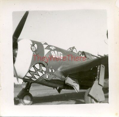 WWII photo- Republic P-47 Thunderbolt Fighter plane Nose Art -  THE BUG