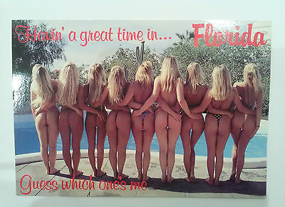 Multiple Bums Florida Postcard