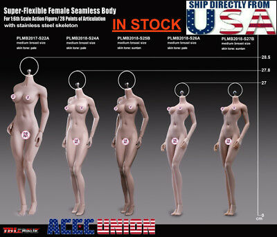 NEW GIRL TYPE PHICEN 1/6 Steel Skeleton ASIAN Female Seamless Figure Body U.S.A.