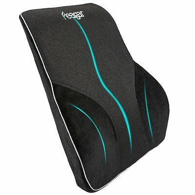 Memory Foam Cushion Back Support Pillow Lumbar Pain Relief Office Home Car Chair