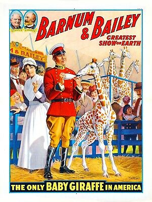 1916 Barnum & Bailey Baby Giraffe Vintage Circus Advertisement Art Poster