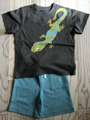 Gymboree 2 Pc Lizard Outfit, Size 18-24 Months, NWT
