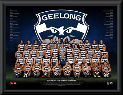 "GEELONG CATS AFL 2017 TEAM POSTER WITH FRAME ""OFFICIAL & LICENSED"" NEW 60x80CM"