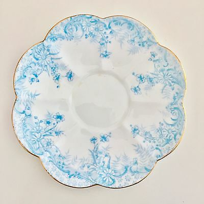 Shelley Lily or Century shape replacement saucer, Fern pattern in light blue