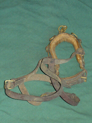 Vintage Training Halter Headstall LEATHER & BRASS Horse Tack Bridle Collar