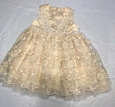 3702a0331a17 New Mae Li Rose Ivory Embroidered Lace Tulle Wedding Party Dress Size  18/24M NWT