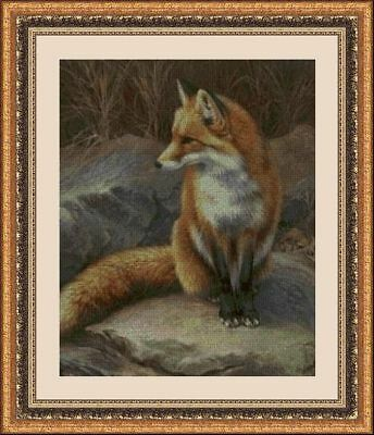 Kit De Punto De Cruz Panda, Cross Stitch Kit Animales 30171