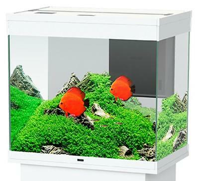 CIANO Aquarium Emotions Pro Aquariums Blanc 60