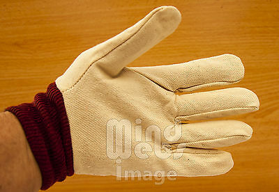 Industrial Cotton Work Gloves x 3 Pairs