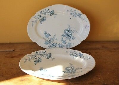 Antique Doulton Burslem Devon Spray Platters. Set of two.