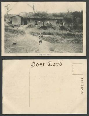 China Old Postcard A City Side Farm House Chinese Woman at Work Dog Puppy Cattle