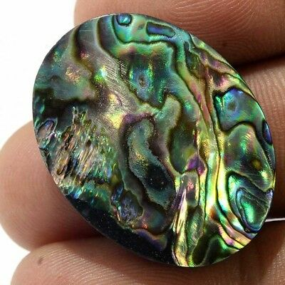 FLAWLESS 31.40Cts NATURAL ABALONE SHELL OVAL SHAPE CABOCHON LOOSE GEMSTONE