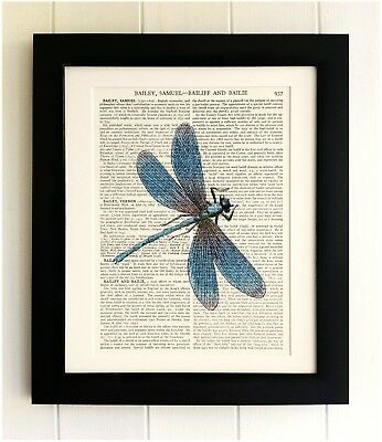 ART PRINT ON OLD ANTIQUE BOOK PAGE *FRAMED* Dragonfly, Insect, Vintage Picture