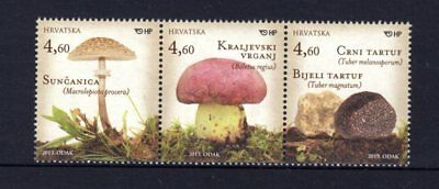 Croatia 2013 Mushrooms Strip 3 MNH