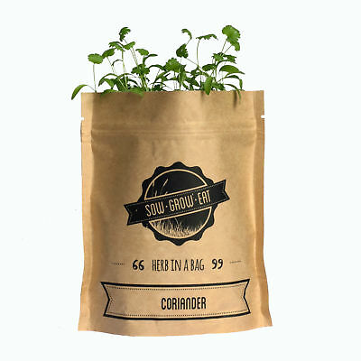 NEW Coriander herb in a bag by Sow Grow Eat