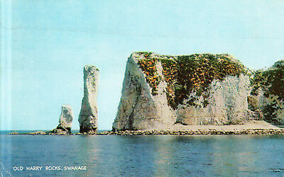 England  -  Old Harry Rocks on the Isle of Purbeck - UNESCO World Heritage Site