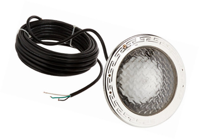Pentair 78428100 Amerlite Underwater Incandescent Pool Light with Stainless Stee