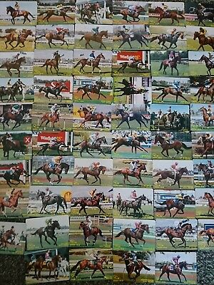 Horse Racing Playing Cards series 1, 1988/89
