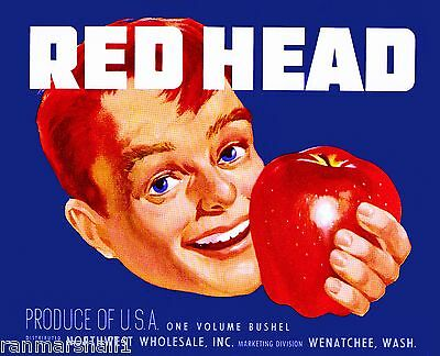 Wenatchee Washington State Red Head 5 Apples Apple Fruit Crate Label Art Print