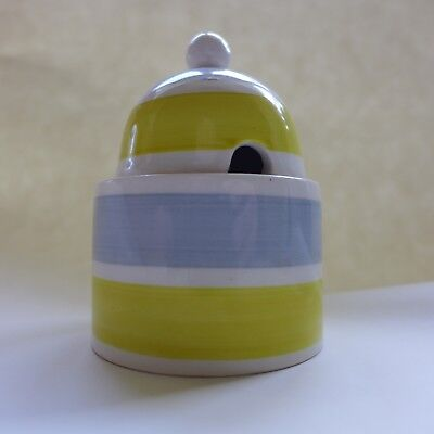 An unusual patterned Portmeirion mustard pot Hand painted dating from the 1960's