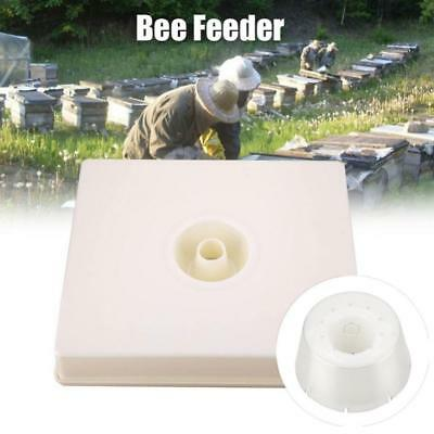 Beekeeping 4 Litre Shallow Rapid Feeder Beehive Drinking Bowl Bee Keeping Equip