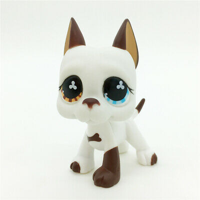 Littlest Pet Shop LPS Collection #577 GREAT DANE DOG Brown & White Flower Eyes
