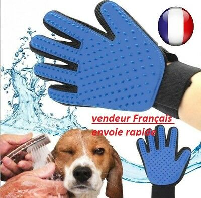 Gant Brosse Animal Chien Chat ramasse poils Toilettage Brossage